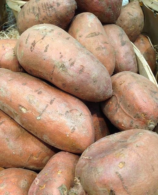 【食】焼き芋人気でサツマイモ値上がり 店頭で1~2割高